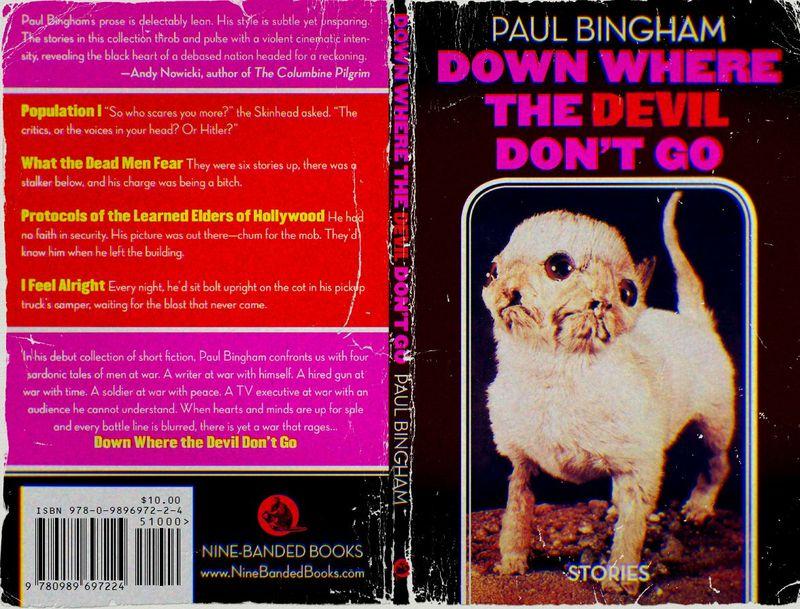 Bingham cover for blog